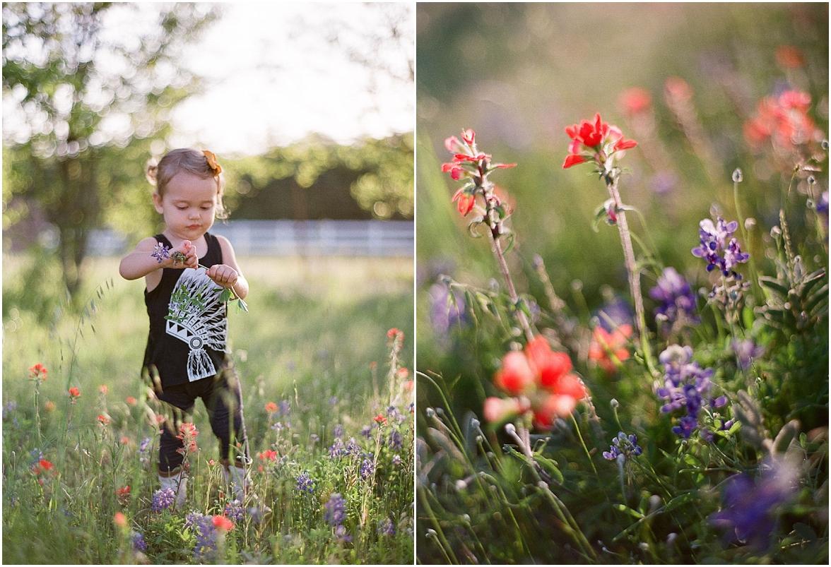 Colorado Field Photographs
